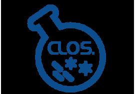 Clostridia redukujące siarczyny